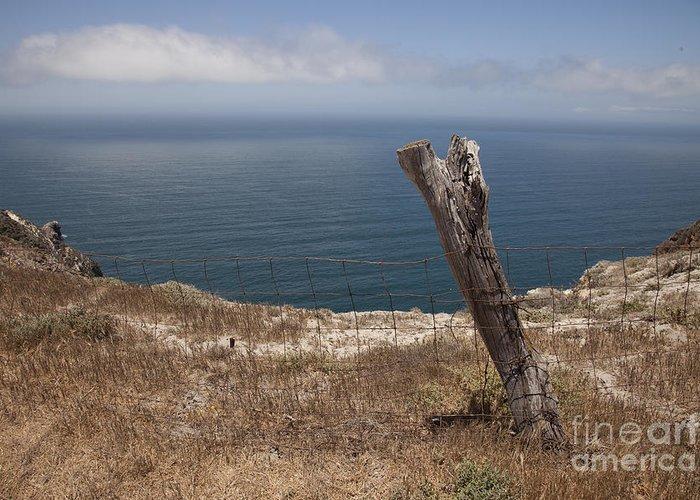 santa Cruz Greeting Card featuring the photograph Artist's Retreat by Amanda Barcon