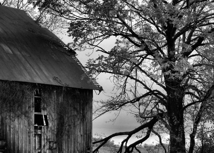 Barn Greeting Card featuring the photograph At The Barn In Bw by Julie Dant