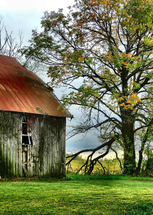 Barns Greeting Card featuring the photograph At The Barn by Julie Dant