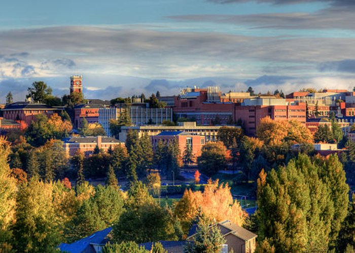 Washington State University Greeting Card featuring the photograph Autumn At Wsu by David Patterson