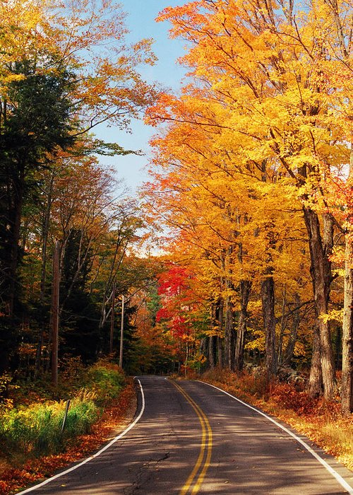 Autumn Greeting Card featuring the photograph Autumn Country Road by Joann Vitali
