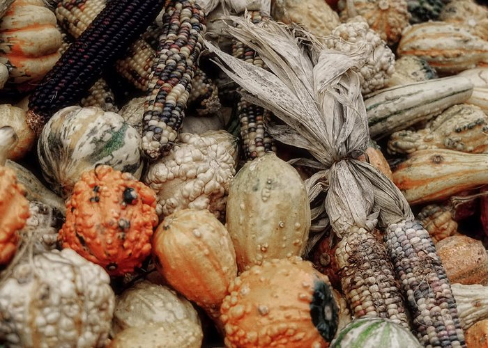 Vegetable Greeting Card featuring the photograph Autumn Gourds 2 by Joann Vitali