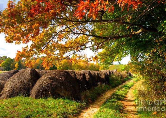 Blue Ridge Mountains Greeting Card featuring the painting Autumn Hay Bales Blue Ridge Mountains II by Dan Carmichael