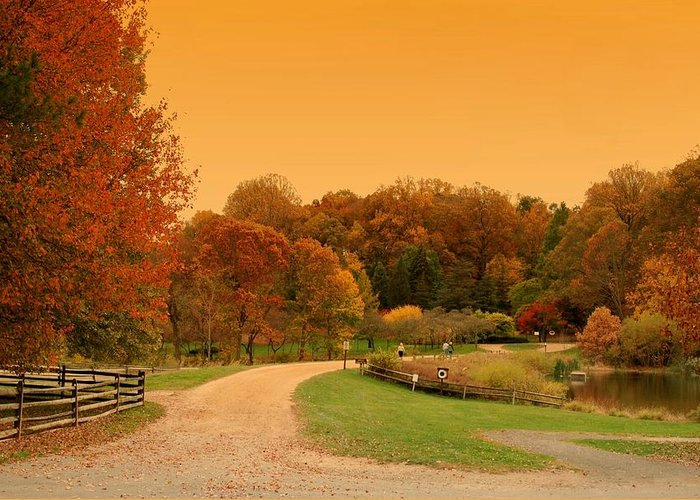 Autumn In The Park Greeting Card featuring the photograph Autumn In The Park - Holmdel Park by Angie Tirado
