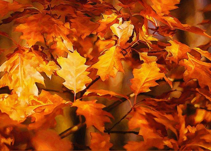 Autumn Greeting Card featuring the photograph Autumn Leaves Oil by Steve Harrington