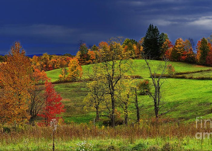 Autumn Morning Greeting Card featuring the photograph Autumn Storm by Thomas R Fletcher