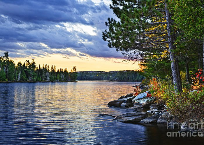 Sunset Greeting Card featuring the photograph Autumn Sunset At Lake by Elena Elisseeva
