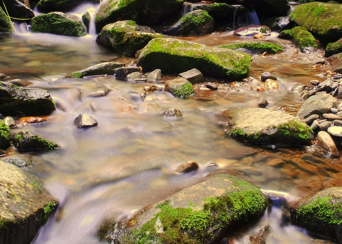 Babbling Greeting Card featuring the photograph Babbling Brook by Frozen in Time Fine Art Photography