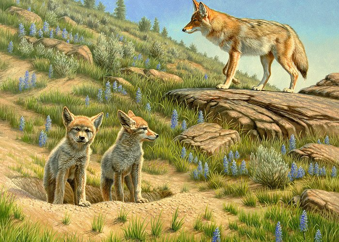 Wildlife Greeting Card featuring the painting Babysitter - Coyotes by Paul Krapf