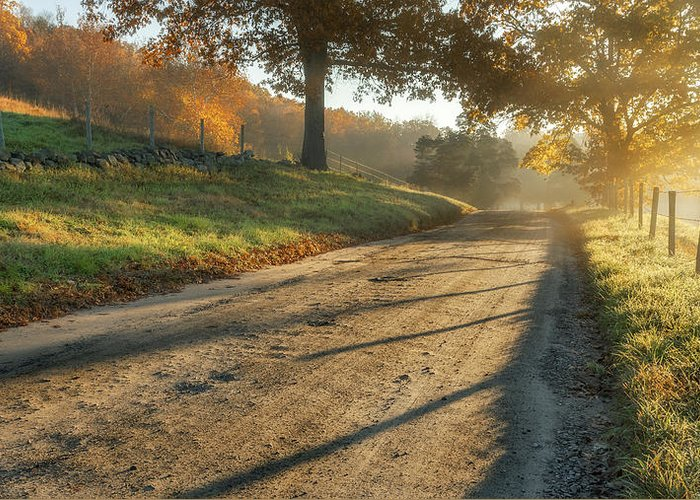 Fog Greeting Card featuring the photograph Back Road Morning by Bill Wakeley