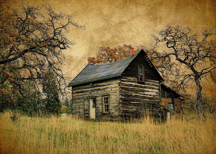 Cabin Greeting Card featuring the photograph Backwoods Cabin by Steve McKinzie