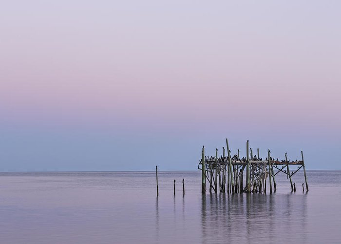 Acrylic Greeting Card featuring the photograph Barely Standing by Jon Glaser