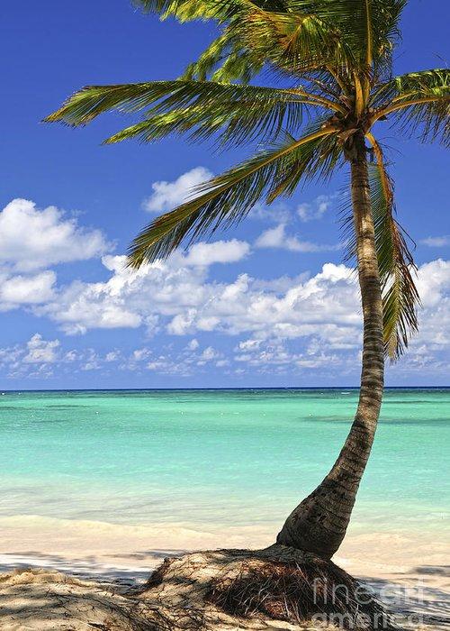 Beach Greeting Card featuring the photograph Beach Of A Tropical Island by Elena Elisseeva