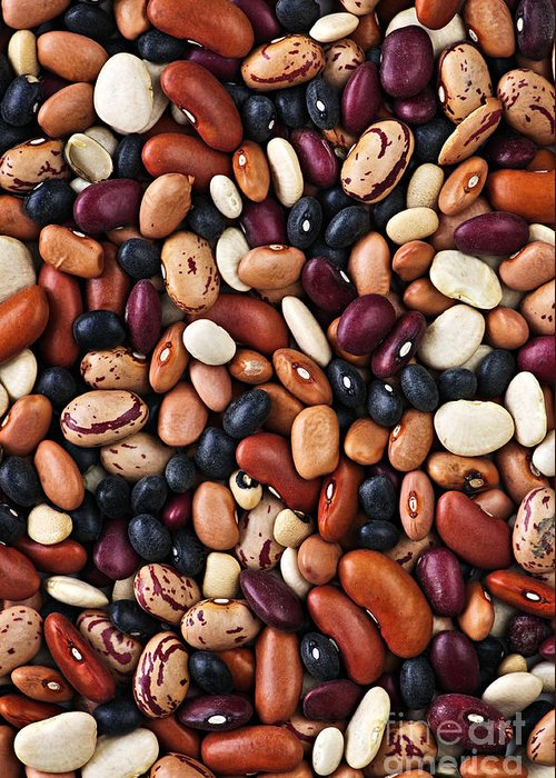 Beans Greeting Card featuring the photograph Beans by Elena Elisseeva