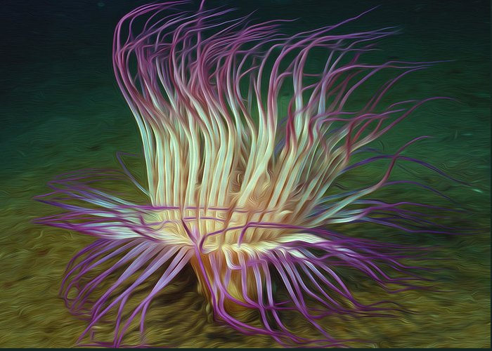 Starfish Greeting Card featuring the painting Beautiful Sea Anemone 1 by Lanjee Chee
