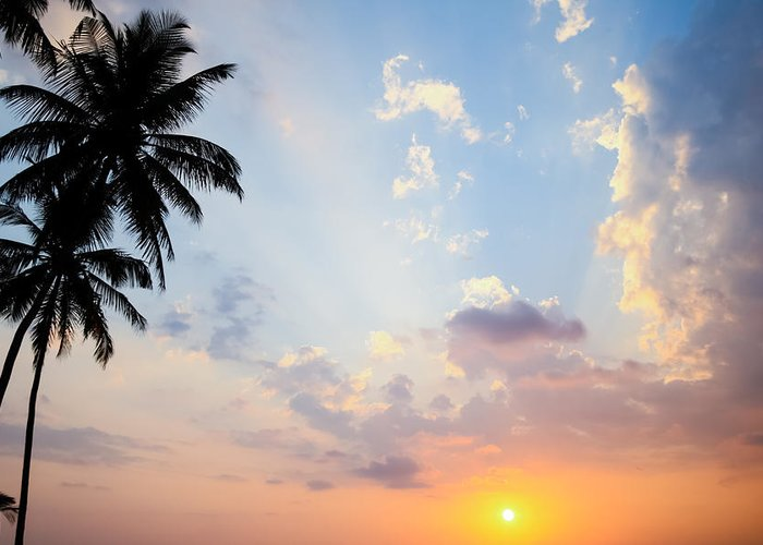 Sunset Greeting Card featuring the photograph Beautiful Tropical Sunset by Nila Newsom
