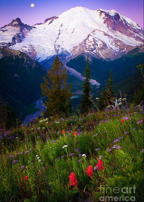 America Greeting Card featuring the photograph Before Dawn At Mount Rainier by Inge Johnsson