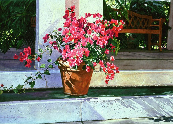 Bel-air Greeting Card featuring the painting Bel-air Bougainvillea Pot by David Lloyd Glover