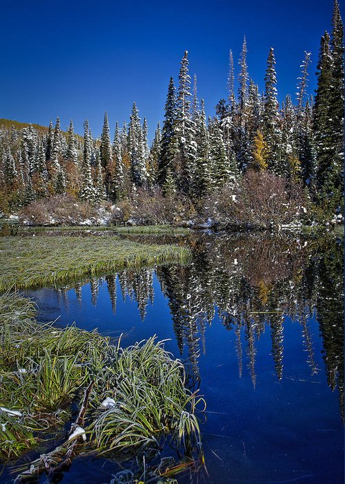 Reflecting Water Greeting Card featuring the photograph Big Cottonwood Canyon by Richard Cheski