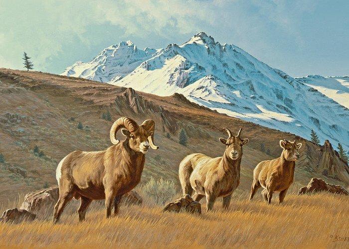 Wildlife Greeting Card featuring the painting Bighorn Below Electric Peak by Paul Krapf