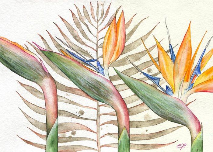 Strelitzia Greeting Card featuring the painting Bird Of Paradise 05 Elena Yakubovich by Elena Yakubovich