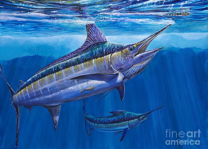 Blue Marlin Greeting Card featuring the painting Blue Marlin Bite Off001 by Carey Chen