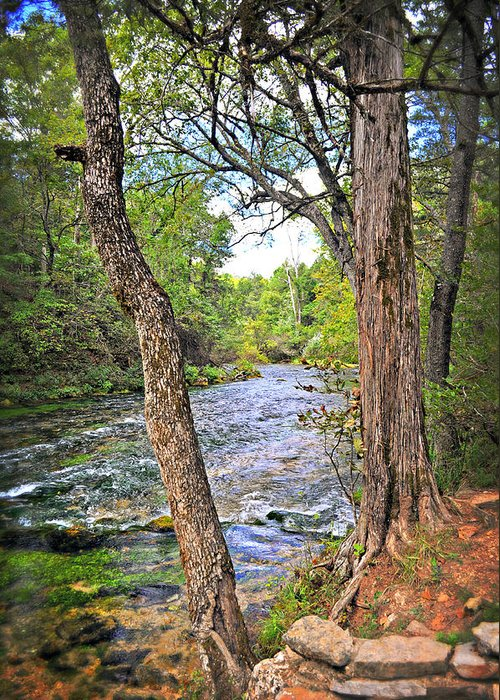 Spring Greeting Card featuring the photograph Blue Spring Branch 2 by Marty Koch