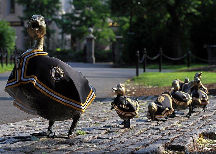 Bruins Greeting Card featuring the photograph Boston Bruins Ducklings by Juergen Roth