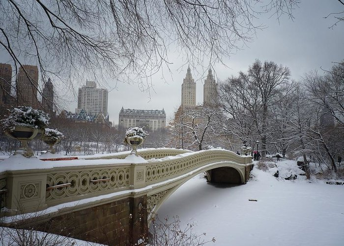 Landscape Greeting Card featuring the photograph Bow Bridge Central Park In Winter by Vivienne Gucwa