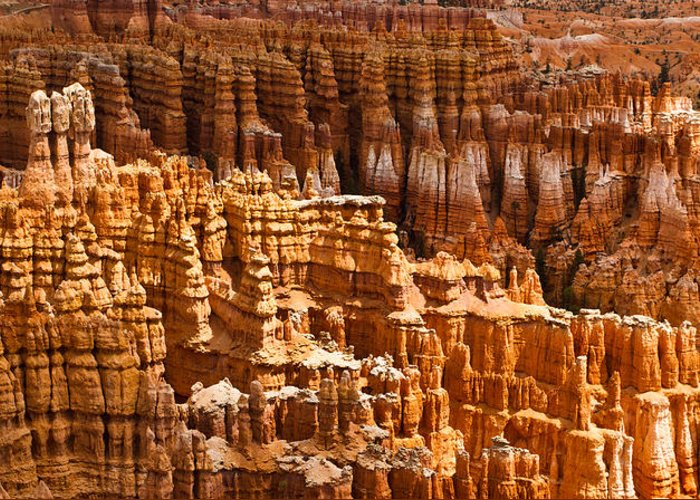 Bryce Greeting Card featuring the photograph Bryce Hoodoos by Adam Pender