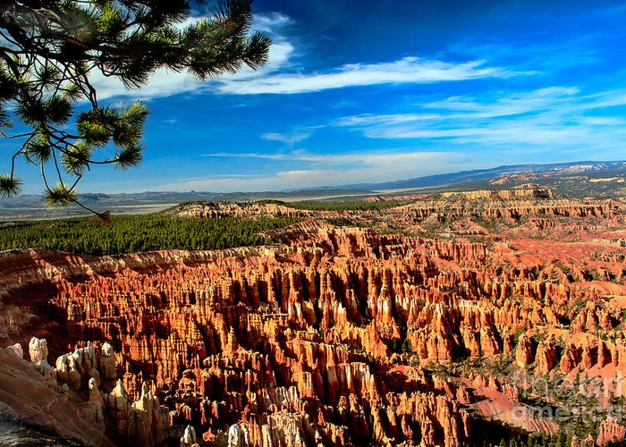 Rock Formations Greeting Card featuring the photograph Bryce by Robert Bales