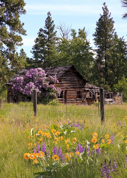 Cabin Greeting Card featuring the photograph Cabin And Wildflowers by Athena Mckinzie