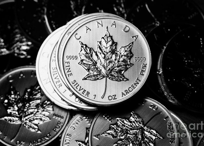Silver Greeting Card featuring the photograph Canadian One Ounce Maple Leaf Silver Coins by Joe Fox
