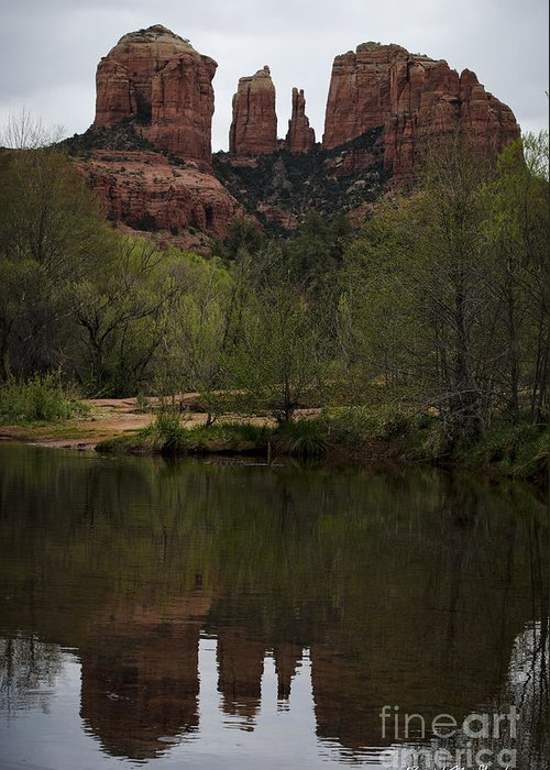 Cathedral Greeting Card featuring the photograph Cathedral Rock And Reflection by Dave Gordon