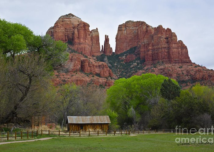 Cathedral Greeting Card featuring the photograph Cathedral Rock V by Dave Gordon