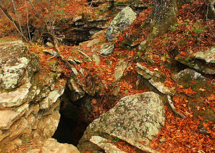 Devils Den Cave Landscape Fall Color Arkansas Greeting Card featuring the photograph Cave by Billy Beasley