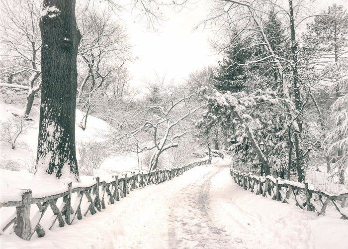 Nyc Greeting Card featuring the photograph Central Park Winter Landscape by Vivienne Gucwa