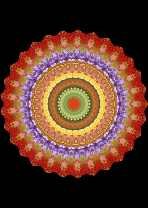 Chakra Greeting Card featuring the photograph Chakra Spin by Barbie Wagner
