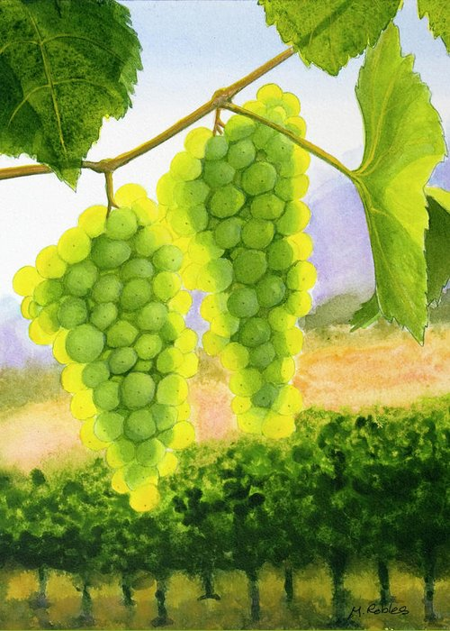 Chardonnay Greeting Card featuring the painting Chardonnay Grapes by Mike Robles