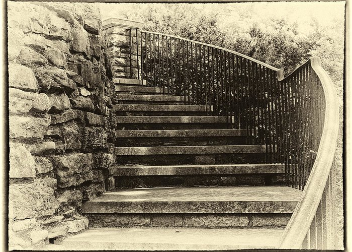 Black And White Greeting Card featuring the photograph Cheekwood Stairs Cropped by Mark Furnell