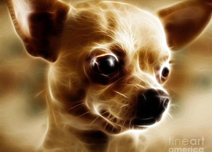 Animal Greeting Card featuring the photograph Chihuahua Dog - Electric by Wingsdomain Art and Photography