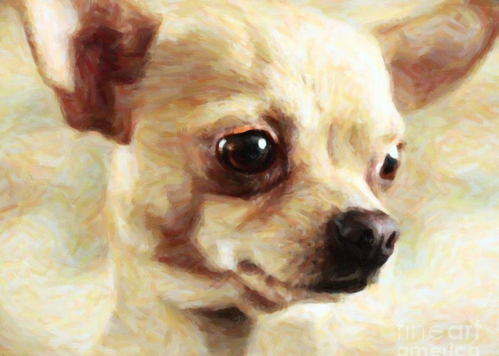Animal Greeting Card featuring the photograph Chihuahua Dog - Painterly by Wingsdomain Art and Photography