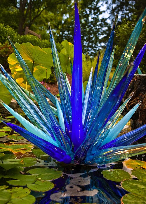Cheekwood Greeting Card featuring the photograph Chihuly Lily Pond by Diana Powell