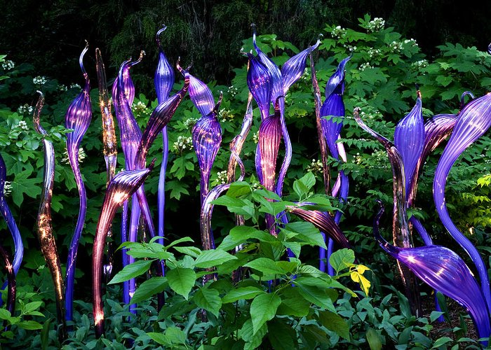 Cheekwood Greeting Card featuring the photograph Chihuly Woods by Diana Powell