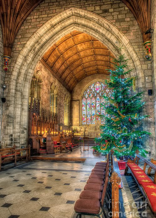 Aisle Greeting Card featuring the photograph Christmas Tree by Adrian Evans