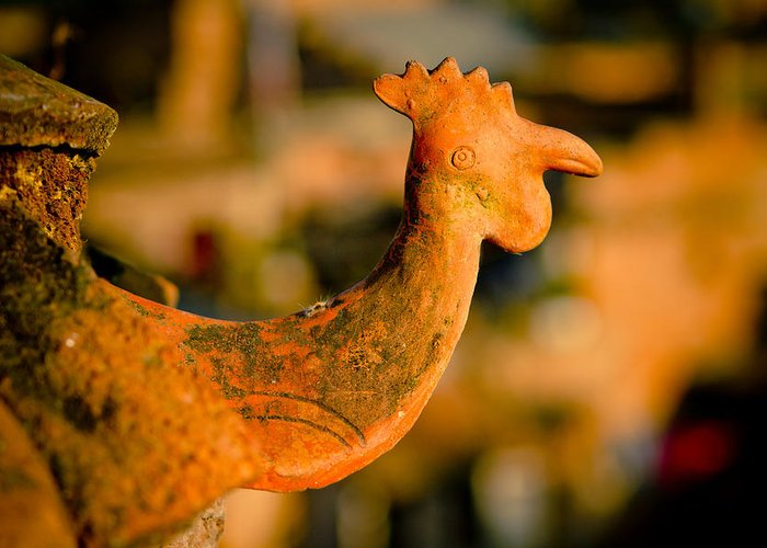 Objects Greeting Card featuring the photograph Clay Cockerel Bhaktapur by Raimond Klavins