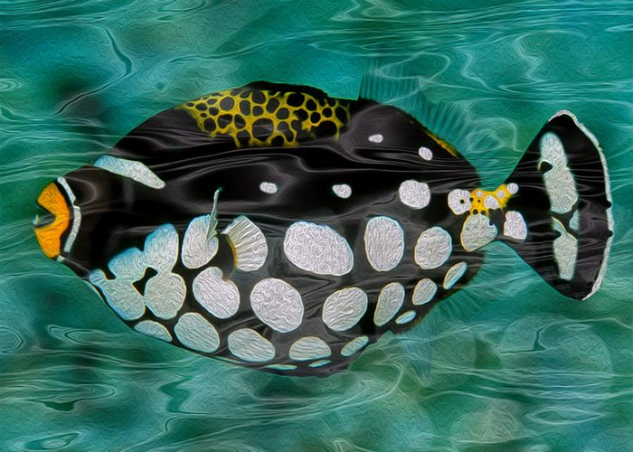Clown Triggerfish Greeting Card featuring the painting Clown Triggerfish by Jack Zulli