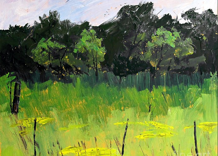 Landscape Greeting Card featuring the painting Clusters Of Black-eyed Susans by Charlie Spear