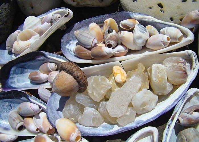 Acorn Greeting Card featuring the photograph Coastal Beach Art Prints Agates Shells Acorn by Baslee Troutman