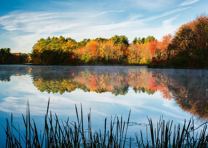 Grist Millpond Greeting Card featuring the photograph Color On Grist Millpond by Michael Blanchette